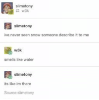 Ironic, Snow, and Water: slimetony  slimetony  ve never seen snow someone describe it to me  颶  w3k  smells like water  slimetony  its like im there  Source:slimetony I've never seen snow before ( only like shredded up ice made to look like snow ) is like sand like that feeling ????? I don't know