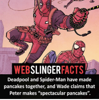 """▲▲ - Spidey and DP! - My other IG accounts @factsofflash @yourpoketrivia @facts_of_heroes ⠀⠀⠀⠀⠀⠀⠀⠀⠀⠀⠀⠀⠀⠀⠀⠀⠀⠀⠀⠀⠀⠀⠀⠀⠀⠀⠀⠀⠀⠀⠀⠀⠀⠀⠀⠀ ⠀⠀----------------------- spiderman peterparker tomholland marvelfacts spidermanfacts webslingerfacts venom carnage avengers xmen justiceleague marvel homecoming tobeymaguire andrewgarfield ironman spiderman2099 civilwar auntmay like gwenstacy maryjane deadpool miguelohara hobgoblin milesmorales like4like: SLINGER  ACTS  WEB  Deadpool and Spider-Man have made  pancakes together, and Wade claims that  Peter makes """"spectacular pancakes"""". ▲▲ - Spidey and DP! - My other IG accounts @factsofflash @yourpoketrivia @facts_of_heroes ⠀⠀⠀⠀⠀⠀⠀⠀⠀⠀⠀⠀⠀⠀⠀⠀⠀⠀⠀⠀⠀⠀⠀⠀⠀⠀⠀⠀⠀⠀⠀⠀⠀⠀⠀⠀ ⠀⠀----------------------- spiderman peterparker tomholland marvelfacts spidermanfacts webslingerfacts venom carnage avengers xmen justiceleague marvel homecoming tobeymaguire andrewgarfield ironman spiderman2099 civilwar auntmay like gwenstacy maryjane deadpool miguelohara hobgoblin milesmorales like4like"""