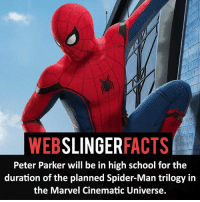 ▲▲ - What do you think about this?! - My other IG accounts @factsofflash @yourpoketrivia @facts_of_heroes ⠀⠀⠀⠀⠀⠀⠀⠀⠀⠀⠀⠀⠀⠀⠀⠀⠀⠀⠀⠀⠀⠀⠀⠀⠀⠀⠀⠀⠀⠀⠀⠀⠀⠀⠀⠀ ⠀⠀----------------------- spiderman peterparker tomholland marvelfacts spidermanfacts webslingerfacts venom carnage avengers xmen justiceleague marvel homecoming tobeymaguire andrewgarfield ironman spiderman2099 civilwar auntmay like gwenstacy maryjane deadpool miguelohara hobgoblin milesmorales like4like: SLINGER  FACTS  WEB  Peter Parker will be in high school for the  duration of the planned Spider-Man trilogy in  the Marvel Cinematic Universe. ▲▲ - What do you think about this?! - My other IG accounts @factsofflash @yourpoketrivia @facts_of_heroes ⠀⠀⠀⠀⠀⠀⠀⠀⠀⠀⠀⠀⠀⠀⠀⠀⠀⠀⠀⠀⠀⠀⠀⠀⠀⠀⠀⠀⠀⠀⠀⠀⠀⠀⠀⠀ ⠀⠀----------------------- spiderman peterparker tomholland marvelfacts spidermanfacts webslingerfacts venom carnage avengers xmen justiceleague marvel homecoming tobeymaguire andrewgarfield ironman spiderman2099 civilwar auntmay like gwenstacy maryjane deadpool miguelohara hobgoblin milesmorales like4like