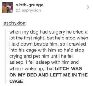 poor dog: sloth-grunge  asphyxion  asphyxion:  when my dog had surgery he cried a  lot the first night, but he'd stop when  i laid down beside him. so i crawled  into his cage with him so he'd stop  crying and pet him until he fell  asleep. i fell asleep with him and  when i woke up, that bITCH WAS  ON MY BED AND LEFT ME IN THE  CAGE poor dog