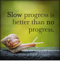 Memes, Science, and Spirit: Slow progress is  better than no  progress  Spirit Science spiritscience