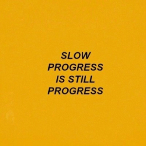 Progress: SLOW  PROGRESS  IS STILL  PROGRESS