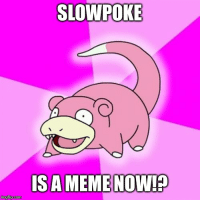 Can't quite believe pokemon's recent return to relevance...: SLOWPOKE  IS A MEME NOW!  imgflip.com Can't quite believe pokemon's recent return to relevance...