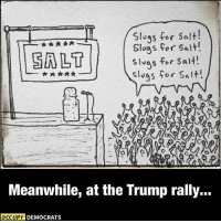 Accurate.: slugs for salt!  slugs for salt!  slugs for salt!  slugs for Alt.  Meanwhile, at the Trump rally...  OCCUPY DEMOCRATS Accurate.
