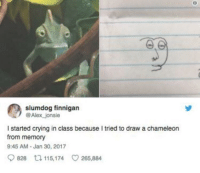 Crying, Chameleon, and Class: slumdog finnigan  @Alex jonsie  I started crying in class because I tried to draw a chameleon  from memory  9:45 AM-Jan 30, 2017  9828ロ115,174 265,884 me👀irl