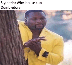 9000 points to Gryffindor!: Slytherin: Wins house cup  Dumbledore: 9000 points to Gryffindor!