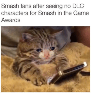 Still waiting for Sora: Smash fans after seeing no DLC  characters for Smash in the Game  Awards Still waiting for Sora