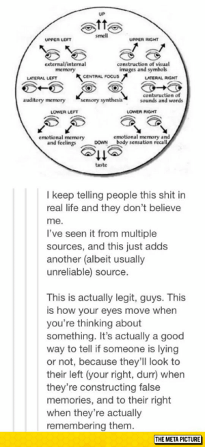 This Is Actually Legit, Guyshttp://advice-animal.tumblr.com/: smell  UPPER RIGHT  UPPER LEFT  external/internal  memory  construction of visual  images and symbols  CENTRAL FOCUS  LATERAL LEFT  LATERAL RIGHT  contsruction of  sounds and words  auditory memory  sensory synthesis  LOWER LEFT  LOWER RIGHT  emotional memory and  DOWN body sensation recall  emotional memory  and feelings  taste  I keep telling people this shit in  real life and they don't believe  me.  I've seen it from multiple  sources, and this just adds  another (albeit usually  unreliable) source.  This is actually legit, guys. This  is how your eyes move when  you're thinking about  something. It's actually a good  way to tell if someone is lying  or not, because they'll look to  their left (your right, durr) when  they're constructing false  memories, and to their right  when they're actually  remembering them.  THE META PICTURE This Is Actually Legit, Guyshttp://advice-animal.tumblr.com/