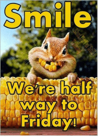 Have A Great Day All! ... :) <3: Smil  Friday Have A Great Day All! ... :) <3