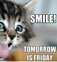 SMILE!  TOMORROW  IS FRIDAY  COM Cheer up!
