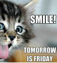 Friday, Memes, and Smile: SMILE!  TOMORROW  IS FRIDAY Keep smiling :)  Kb