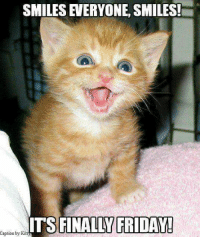 Its Finally Friday: SMILES EVERYONE, SMILES!  ITS FINALLY FRIDAY!  Caption by Kit