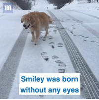 Epic Smiley: Smiley was born  without any eyes