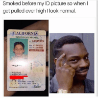 "Genius 😂: Smoked before my ID picture so when  get pulled over high l look normal.  CALIFORNIA  IDENTIFICATION CAR  ID Y4985905  Exp 01/06/2023  01/06/1999  AGE21 IN 2020  LNAGUIRRE  EN ANTHONY LUIS  HAIR BRN EYES HZL  HGT 5-10"" WGT 120 lb  02/28/2017  DD02/28/201761987/BBFO23 Genius 😂"