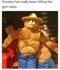 Gym, Bear, and Girl Memes: Smokey has really been hitting the  gym lately Swoley the bear 🤣