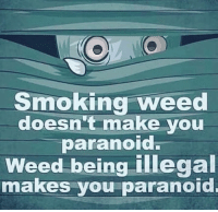 Memes, Smoking, and Weed: Smoking weed  doesn't make you  aranoIo  Weed being illegal  makes you paranoid.