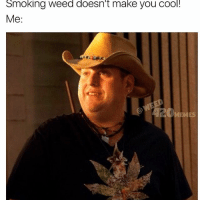 Uh yeah it does bro look at me like an ice chest I'm so cool... buurrrr: Smoking Weed doesn't make you COO!  Me:  MEMES Uh yeah it does bro look at me like an ice chest I'm so cool... buurrrr