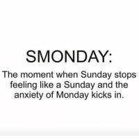 Brace yourselves....it's coming 😩 @smartassinstagram: SMONDAY:  The moment when Sunday stops  feeling like a Sunday and the  anxiety of Monday kicks in Brace yourselves....it's coming 😩 @smartassinstagram