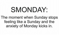 The feeling right now 😩: SMONDAY.  The moment when Sunday stops  feeling like a Sunday and the  anxiety of Monday kicks in The feeling right now 😩