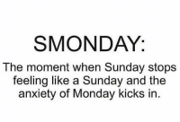 😩😝😂: SMONDAY:  The moment when Sunday stops  feeling like a Sunday and the  anxiety of Monday kicks in. 😩😝😂