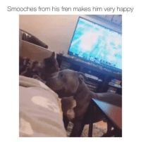 Dude, Happy, and Smile: Smooches from his fren makes him very happy That smile is adorable(u/Chris_lsur_dude)