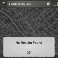 Bitch, Funny, and Bitches: a bitch on my level  No Results Found  OK