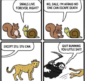 Dank, Memes, and Shit: SNAILS LIVE  NO, DALE, I'M AFRAID NO  ONE CAN ESCAPE DEATH  FOREVER, RIGHT?  QUIT RUNNING  YOU LITTLE SHIT!  EXCEPT STU. STU CAN. I posted this on my old insta account by ProAntiAntiVaxx MORE MEMES