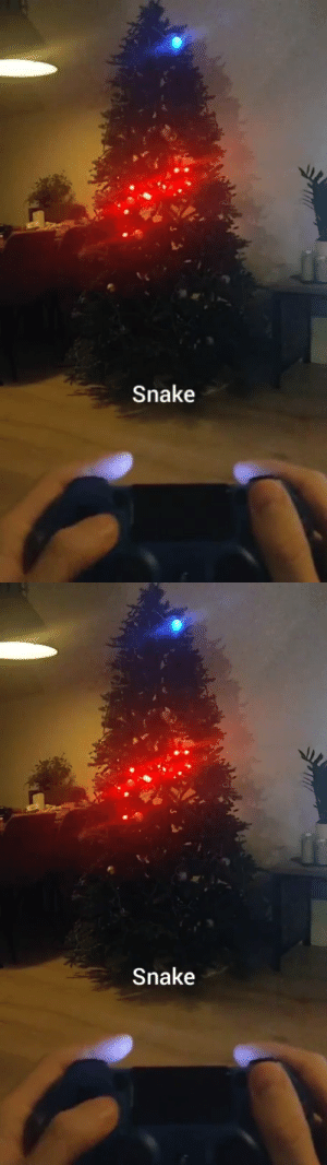 catchymemes:  Engineer Jordy Moos programmed his Christmas tree lights to play Snake.: Snake   Snake catchymemes:  Engineer Jordy Moos programmed his Christmas tree lights to play Snake.
