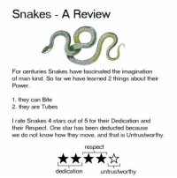 Respect, Power, and Snakes: Snakes A Review  Po  For centuries Snakes have fascinated the imagination  of man kind. So far we have learned 2 things about their  Power  1. they can Bite  2. they are Tubes  I rate Snakes 4 stars out of 5 for their Dedication and  their Respect. One star has been deducted because  we do not know how they move, and that is Untrustworthy  respect  dedication  untrustworthy aminals in review
