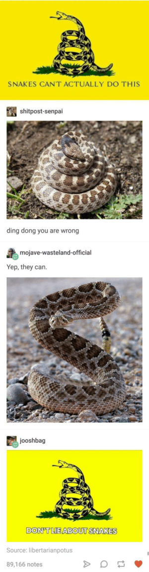 Senpai, Snake, and Snakes: SNAKES CANT ACTUALLY DO THIS  shitpost-senpai  ding dong you are  wrong  mojave-wasteland-official  Yep, they can.  jooshbag  DON'TLIE ABOUT SNAKES  Source: libertarianpotus  89,166 notes snake discourse