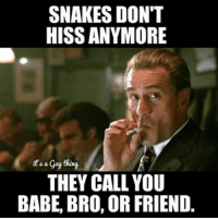 realtalk meme memes bestmemes instacomedy instafunny comedy ctfu funny funnyaf funnypic funnypicture sarcasm nochill haha bitchesbelike dudesbelike instacomedy lol lmao bruh idfwu guysbelike basicbitch: SNAKES DON'T  HISS ANYMORE  d a  THEY CALL YOU  BABE, BRO, OR FRIEND realtalk meme memes bestmemes instacomedy instafunny comedy ctfu funny funnyaf funnypic funnypicture sarcasm nochill haha bitchesbelike dudesbelike instacomedy lol lmao bruh idfwu guysbelike basicbitch