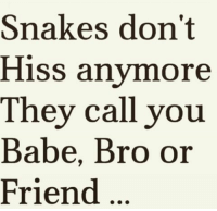 hiss: Snakes don't  Hiss anymore  They call you  Babe, Bro or  Friend