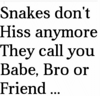 Snakes don't hiss anymore...: Snakes don't  Hiss anymore  They call you  Babe, Bro or  Friend Snakes don't hiss anymore...