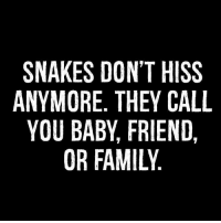 hiss: SNAKES DON'T HISS  ANYMORE THEY CALL  YOU BABY FRIEND  OR FAMILY
