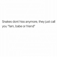 "Fam, Memes, and Snakes: Snakes dont hiss anymore, they just call  you ""fam, babe or friend"" 🐍🐍🐍 Get following @thespeckyblonde @thespeckyblonde @thespeckyblonde @thespeckyblonde"