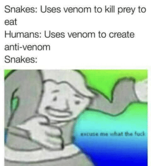 Fuck, Snakes, and Anti: Snakes: Uses venom to kill prey to  eat  Humans: Uses venom to create  anti-venom  Snakes:  excuse me what the fuck