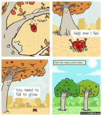 <p>You need to fall to grow</p>: *snap  Help me I fel  Not too many years later...  O o  O  You need to  fall to grovw  O1111coMICS.me <p>You need to fall to grow</p>