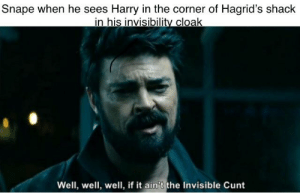 Are Harry Potter memes allowed?: Snape when he sees Harry in the corner of Hagrid's shack  in his invisibility cloak  Well, well, well, if it ain't the Invisible Cunt Are Harry Potter memes allowed?