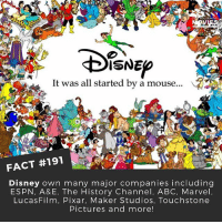 Abc, Disney, and Espn: SNE  It was all started by a mouse  FACT #191  Disney own many major companies including  ESPN, A&E, The History Channel, ABC, Marvel  LucasFilm, Pixar, Maker Studios, Touchstone  Pictures and more! Disney rule the world! 😱 . . . . . All credit to the respective film and producers. movie movies film tv camera cinema fact didyouknow moviefacts cinematography screenplay director actor actress act acting movienight cinemas watchingmovies hollywood bollywood didyouknowmovies