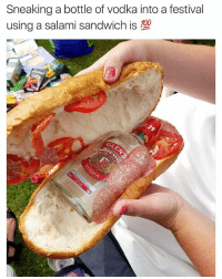 Funny, Lol, and Tbh: Sneaking a bottle of vodka into a festival  using a salami sandwich is TBH I just want the sandwich lol