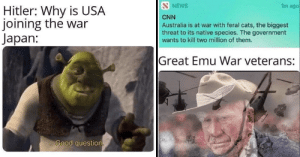 Cats, cnn.com, and Memes: SNEWS  1m ago  Hitler: Why is USA  joining the war  Japan:  CNN  Australia is at war with feral cats, the biggest  threat to its native species. The government  wants to kill two million of them.  Great Emu War veterans:  Good question History Memes For The Big Brain Memers