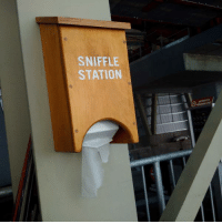 Sniffle and Station: SNIFFLE  STATION