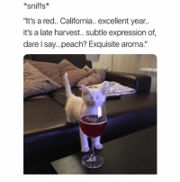 "Funny, Memes, and California: *sniffs  ""It's a red.. California.. excellent year..  it's a late harvest.. subtle expression of  dare l say...peach? Exquisite aroma."" SarcasmOnly"