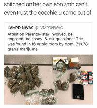 Lol wtf just flush it down the toilet and beat his ass 😴 • Follow @savagememesss for more posts daily: snitched on her own son smh can't  even trust the coochie u came out of  LVMPD NWAC @LVMPDNWAC  Attention Parents- stay involved, be  engaged, be nosey & ask questions! This  was found in 16 yr old room by mom. 713.78  grams marijuana Lol wtf just flush it down the toilet and beat his ass 😴 • Follow @savagememesss for more posts daily