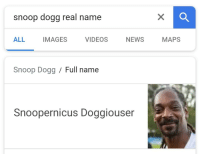 Real Name: snoop dogg real name  ALL IMAGES VIDEOS NEWS MAPS  Snoop Dogg/ Full name  Snoopernicus Doggiouser