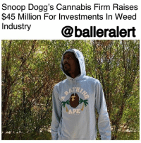 "Memes, Snoop, and Snoop Dogg: Snoop Dogg's Cannabis Firm Raises  $45 Million For Investments In Weed  Industry @balleralert  APE Snoop Dogg's Cannabis Firm Raises $45 Million For Investments In Weed Industry - blogged by @MsJennyb ⠀⠀⠀⠀⠀⠀⠀⠀⠀ ⠀⠀⠀⠀⠀⠀⠀⠀⠀ SnoopDogg has locked down $45 million to invest into cannabis startups. ⠀⠀⠀⠀⠀⠀⠀⠀⠀ ⠀⠀⠀⠀⠀⠀⠀⠀⠀ Back in 2015, the legendary rapper and weed connoisseur co-founded an ancillary cannabis industry venture firm to invest in the business. However, Snoop's Casa Verde Capital is not investing in the dispensaries or the actual weed growing process, but into the picks and shovels used for the process, the Grio reports. ⠀⠀⠀⠀⠀⠀⠀⠀⠀ ⠀⠀⠀⠀⠀⠀⠀⠀⠀ Now, with the new $45 million fund, which is reportedly the largest in the industry, Snoop is reportedly ready to invest no less than $1 million in each company. ⠀⠀⠀⠀⠀⠀⠀⠀⠀ ⠀⠀⠀⠀⠀⠀⠀⠀⠀ ""Our biggest investment to date is LeafLink, a marketplace for retailers and brands,"" his managing partner Karan Wadhera said. ""If you were Walmart and logging onto a platform to order from vendors, that's what LeafLink has created for the cannabis space. A dispensary can log in and order from vendors on one consolidated platform."" ⠀⠀⠀⠀⠀⠀⠀⠀⠀ ⠀⠀⠀⠀⠀⠀⠀⠀⠀ As for Snoop's involvement though, Wadhera says the rapper is all about their lifestyle media website. ⠀⠀⠀⠀⠀⠀⠀⠀⠀ ⠀⠀⠀⠀⠀⠀⠀⠀⠀ ""That's content. That's media. That's Snoop's bread and butter,"" Wadhera said. ""He mainly handles the financial modeling. He's among the most important cultural figures in this industry, which is incredibly important. His involvement lends a lot of credibility and excitement to our portfolio companies. He's also there for input whenever we need it."""