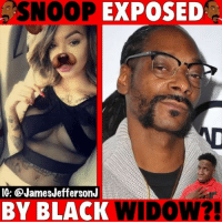 Memes, Snoop, and Snoop Dogg: SNOOP EXPOSED  IG: @JamesJeffersonJ  BY BLACK WIDOW? Snoop Dogg might have been exposed by CelinaPowell...🐸☕️ - - - snoopdogg snoop blackwidow CardiB offset
