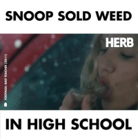 Memes, School, and Snoop: SNOOP SOLD WEED  HERB  IN HIGH SCHOOL Uncle Snoop the plug 🔌🔌