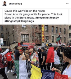 Snoop delivering truth 🙏 by Harvickfan4Life MORE MEMES: snoopdogg  Cause this won't be on the news:  From LA to NY gangs unite for peace. This took  place in the Bronx today. Snoop delivering truth 🙏 by Harvickfan4Life MORE MEMES