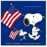 Peanuts: SNOOPY AND THE PEANUTS GANG  DONT FORGET TO HONOR A VET